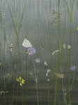 The Edge of the Marsh, detail Green-veined White by Lil Tudor-Craig. Environmental Artist in Lampeter Wales