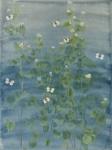 Garlic Mustard by Lil Tudor-Craig. Environmental Artist in Lampeter Wales