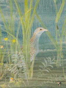 Corncrake, detail by Lil Tudor-Craig. Environmental Artist, Lampeter Wales
