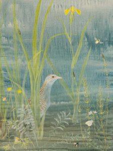 Corncrake by Lil Tudor-Craig. Environmental Artist, Lampeter Wales