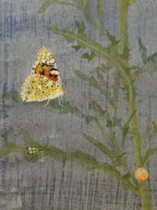 Creeping Thistle - Painted Lady by Lil Tudor-Craig. Environmental Artist in Lampeter Wales