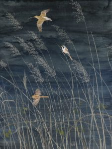 Hazelwood Marshes by Lil Tudor-Craig. Environmental Artist, Lampeter Wales