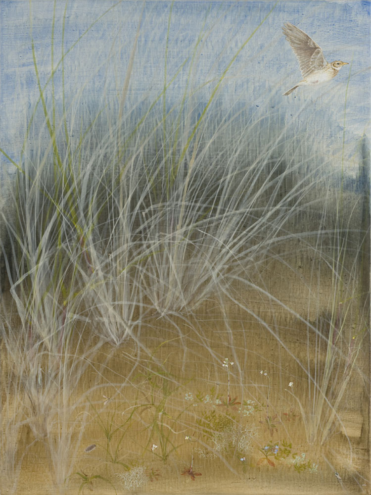 Marram, by Lil Tudor-Craig. Environmental Artist, Lampeter Wales