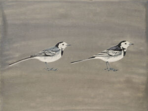 Pied Wagtails by Lil Tudor-Craig. Environmental Artist, Lampeter Wales