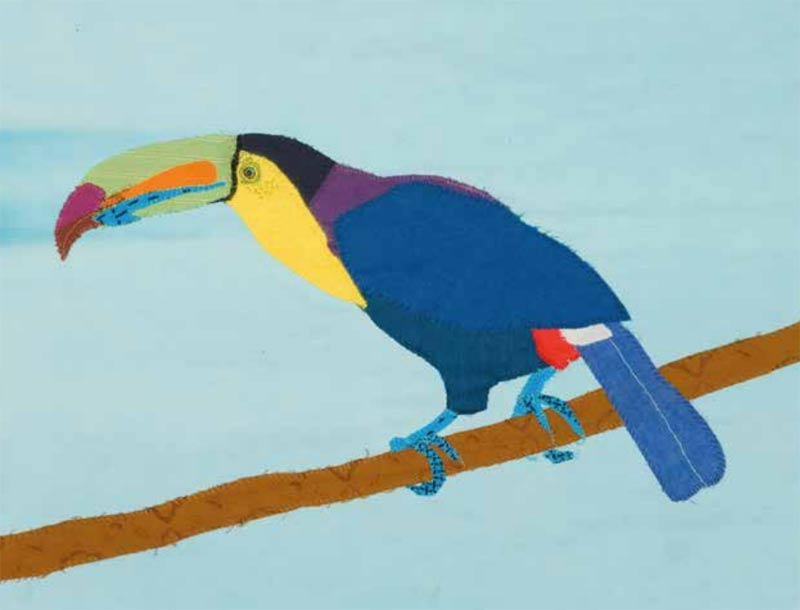 Toucan by Lil Tudor-Craig. Environmental Artist, Lampeter Wales